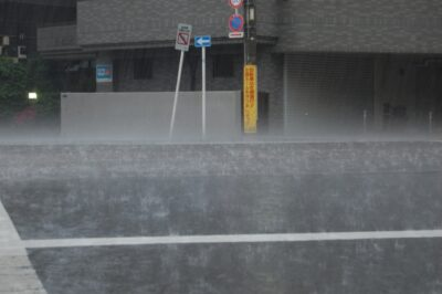 動画で降水量を確認!5mmだとこれくらい!