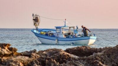 出世魚の代表、ハマチ(イナダ)サイズによる呼ばれ方の順番